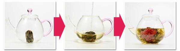 2014母の日カーネーションお茶